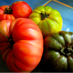 Ode to the Tomato – Bloody Mary Mix Recipe