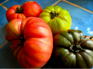 size of an heirloom tomato! Your baby equals a large heirloom tomato ...