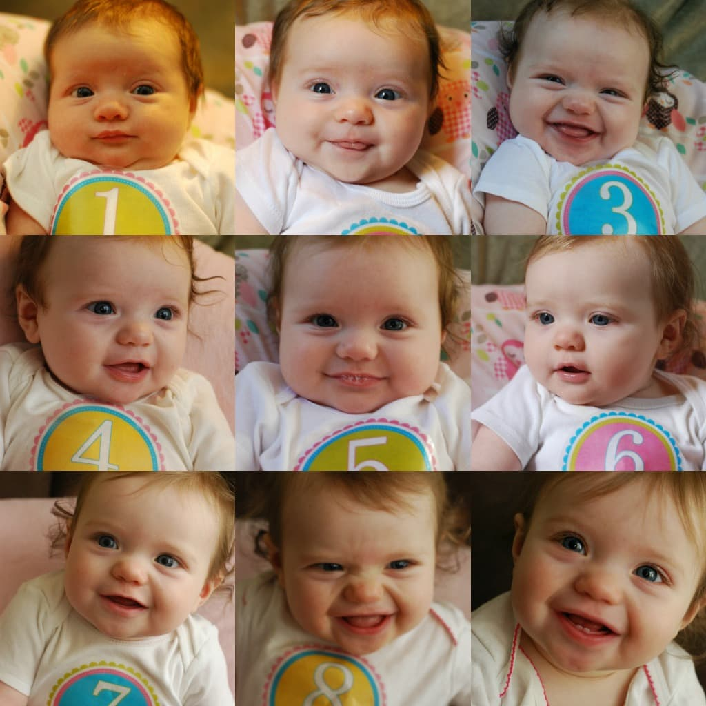 9 Month Collage