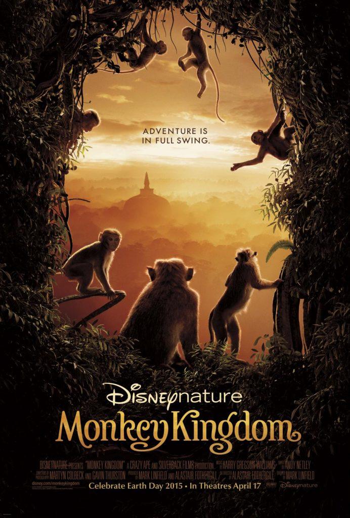 monkeykingdom54877da023d63