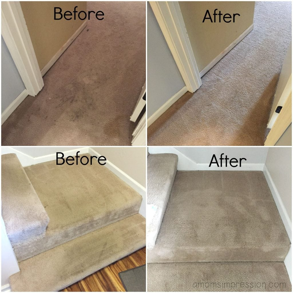 Bringing Our Carpet Back To Life With The Help Of Zerorez