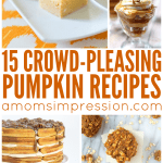 This is a great collection of easy pumpkin recipes for your family. There are healthy options including pumpkin bread, cookies, and other dessert options for after dinner.
