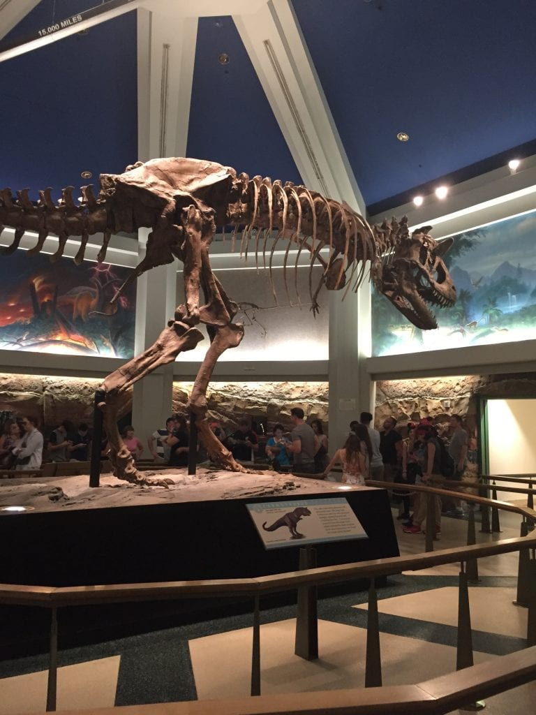 Dinosaur the Ride