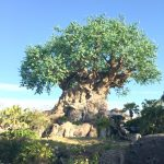 Exploring Disney's Animal Kingdom