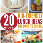 20 More Kid-Friendly Lunches