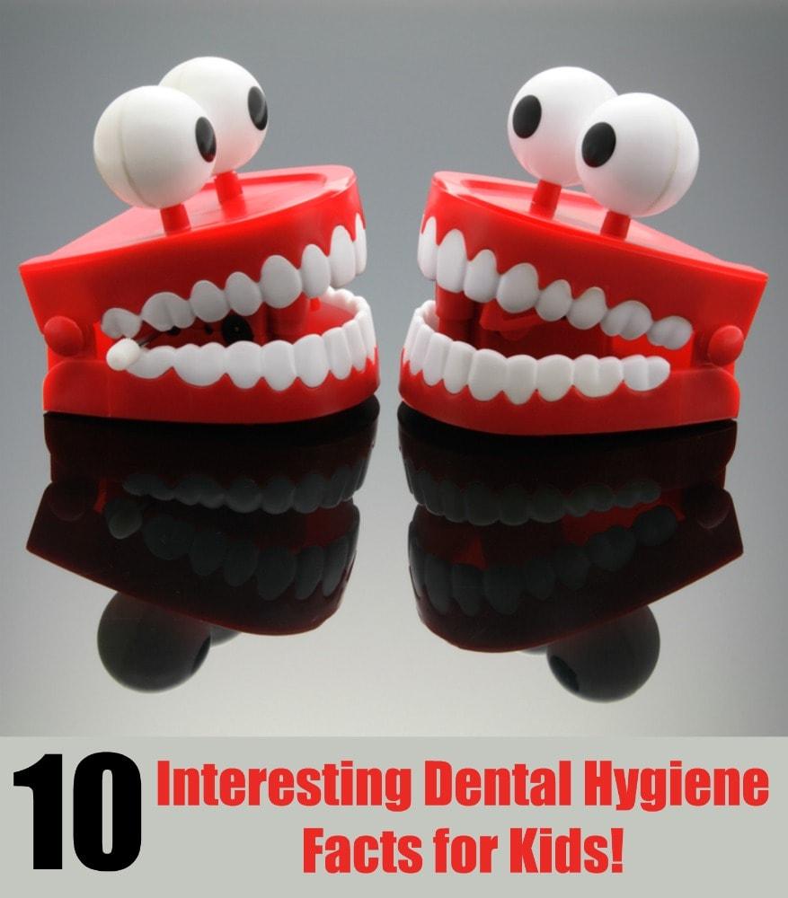 Interesting Dental Hygiene Facts for Kids!