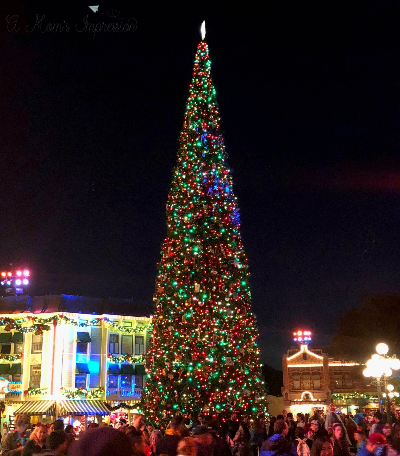 Disneyland Christmas Decorations Christmas Tree