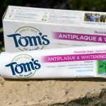 Celebrate Earth Month with Tom's Of Maine