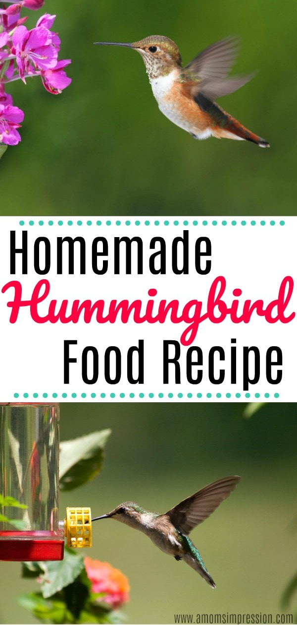 DIY Hummingbird Food