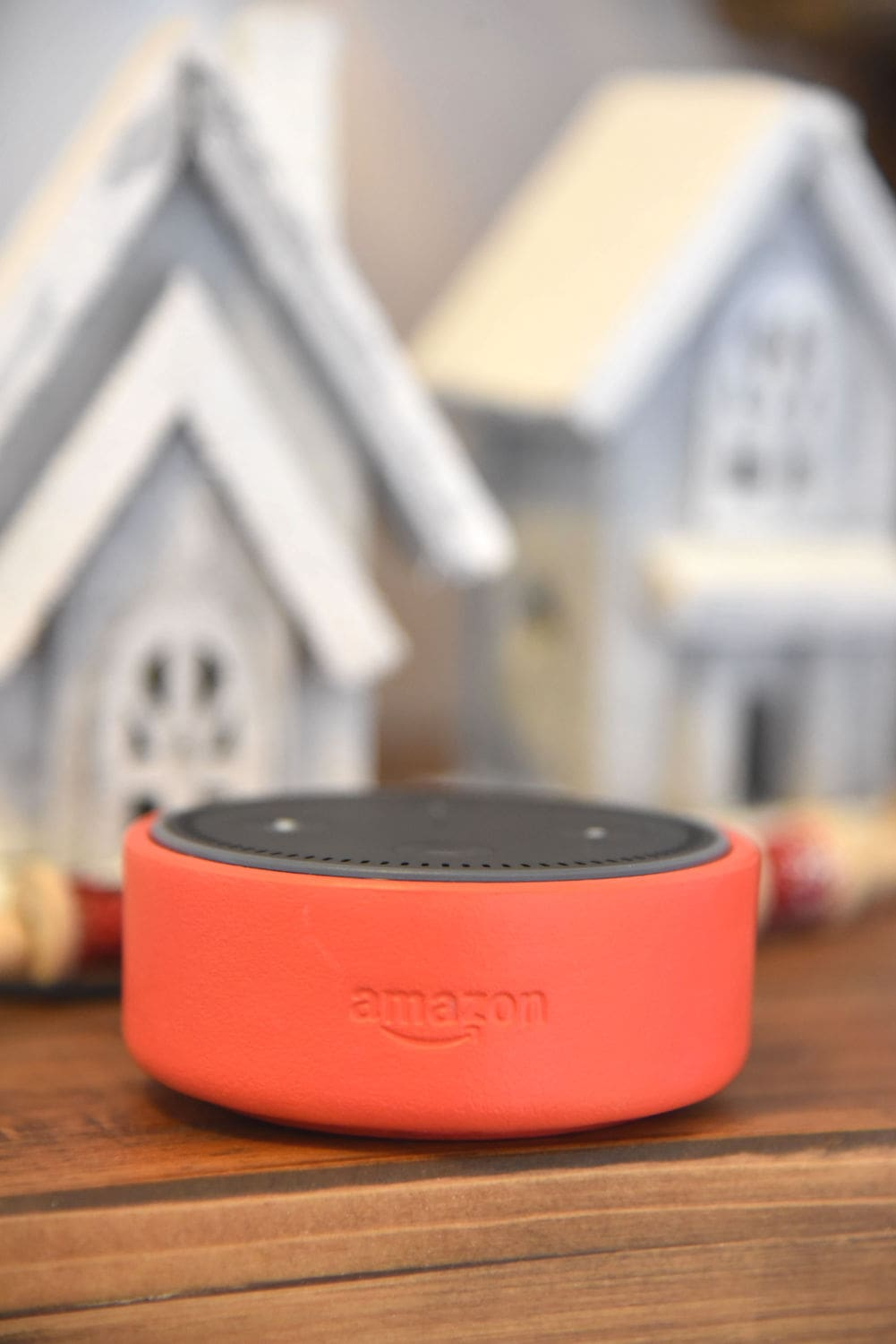 Holiday Echo Dot