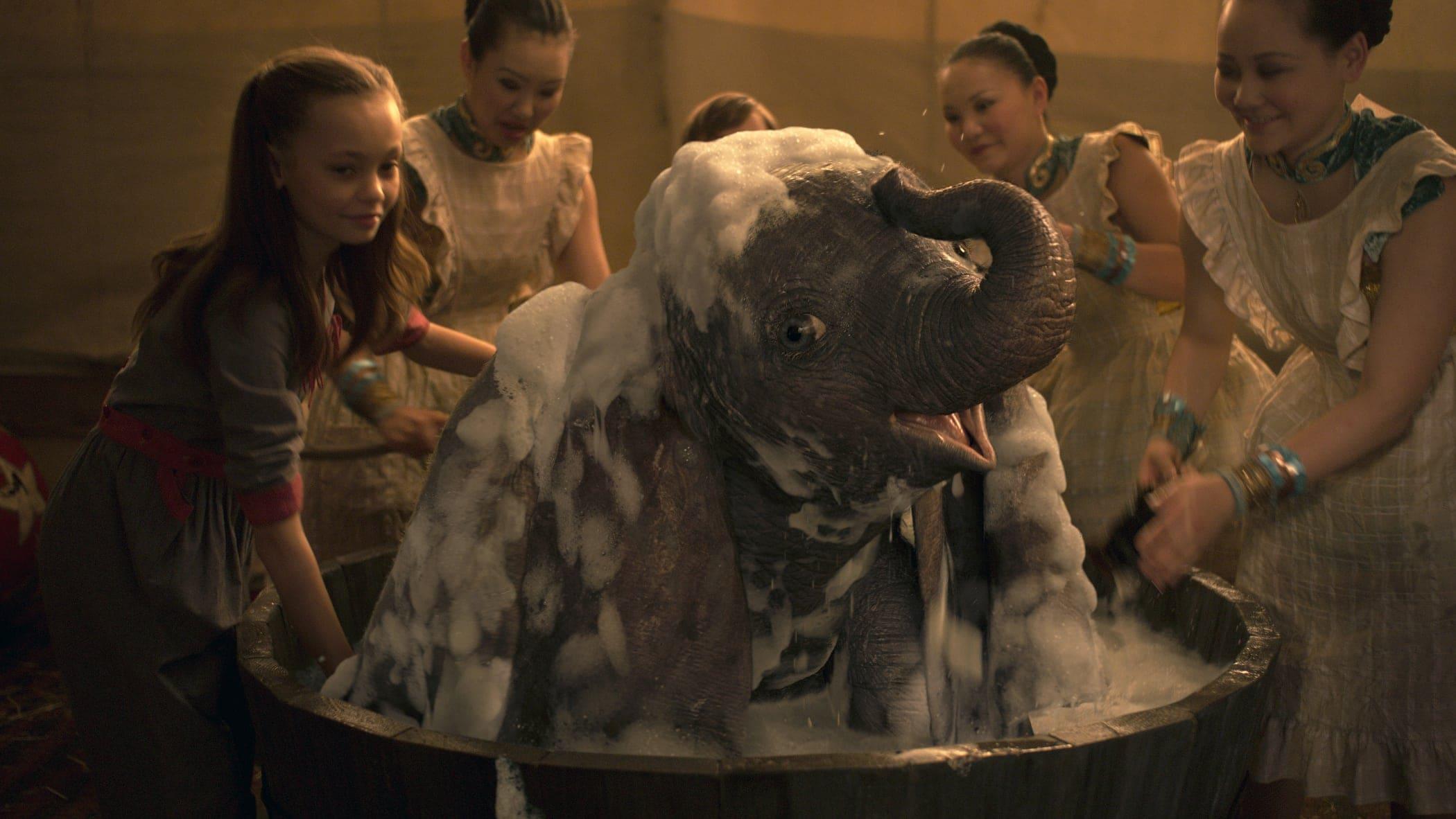 DUMBO taking a bath