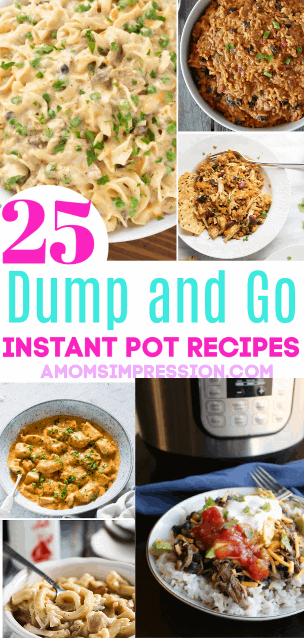 25 Easy Instant Pot Dump And Go Recipes A Mom S Impression