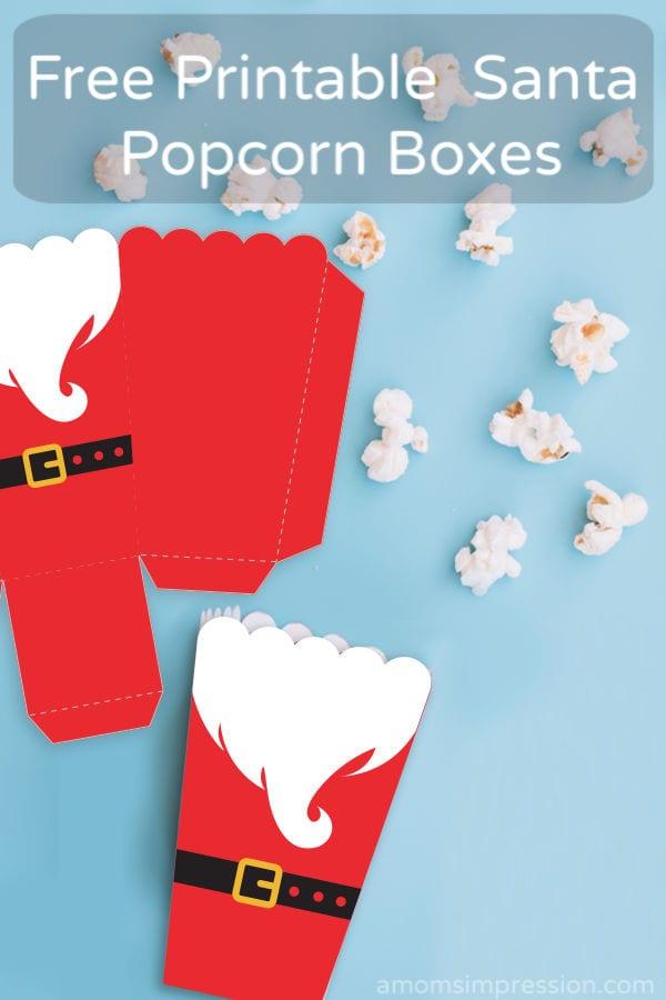 Popcorn Box_Santa_Pin