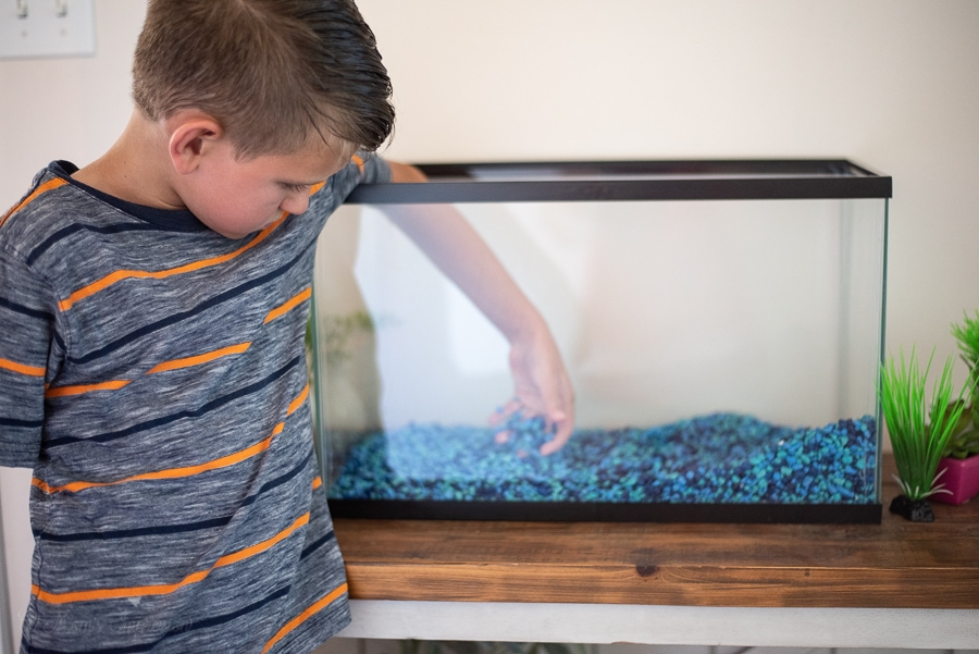 putting gravel in the fish tank