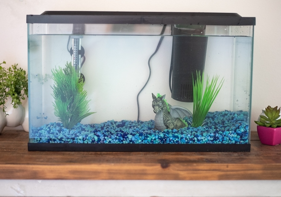 a fish tank set up on a table
