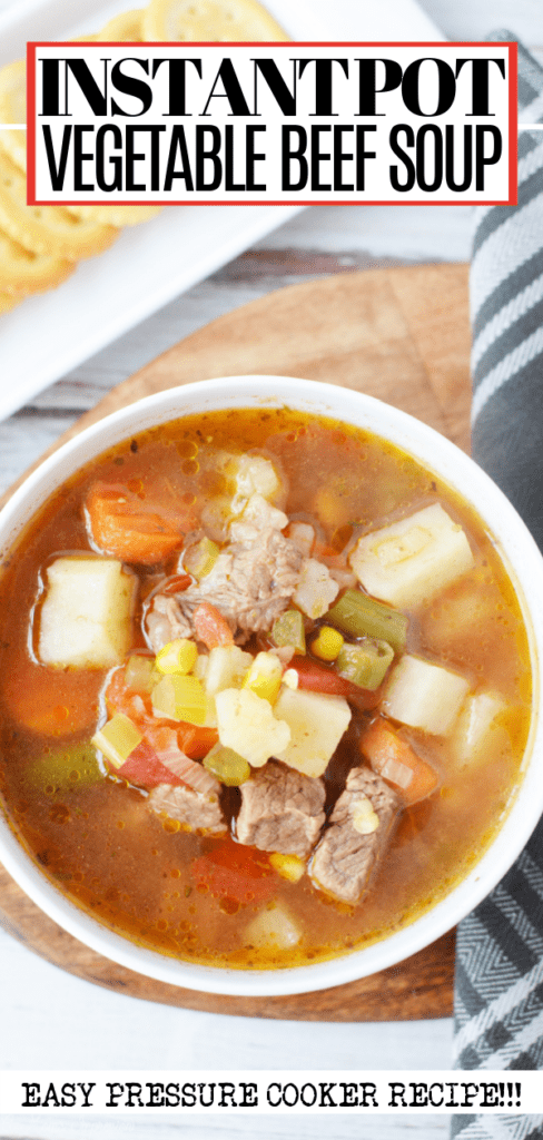 Instant Pot Vegetable Beef Soup Pin
